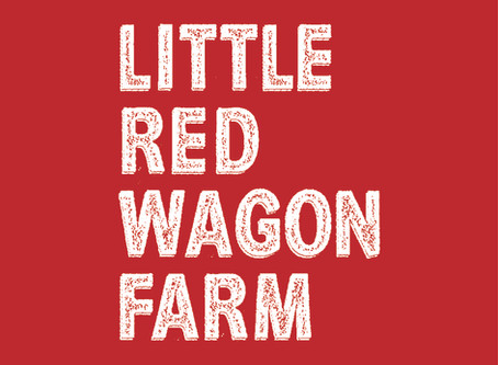 Little Red Wagon Update!