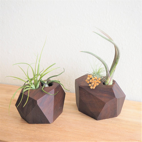FACETED WALNUT AIR PLANT HOLDERS (SET OF 2)