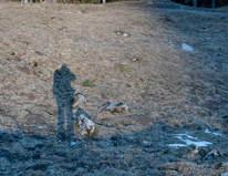 L'ombre du photographe Grossmutterloch  (Gastlosen)