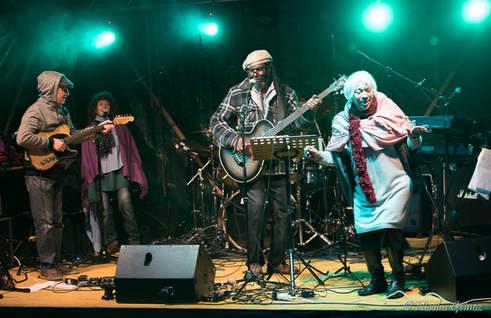 festival_Cabane 17-08-11_016.jpg