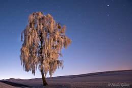 Nuit étoilée à Orsonnens