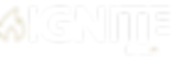 Ignite Logo_FInal_White.png
