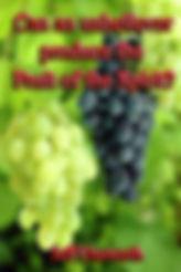 Fruit cov.jpg