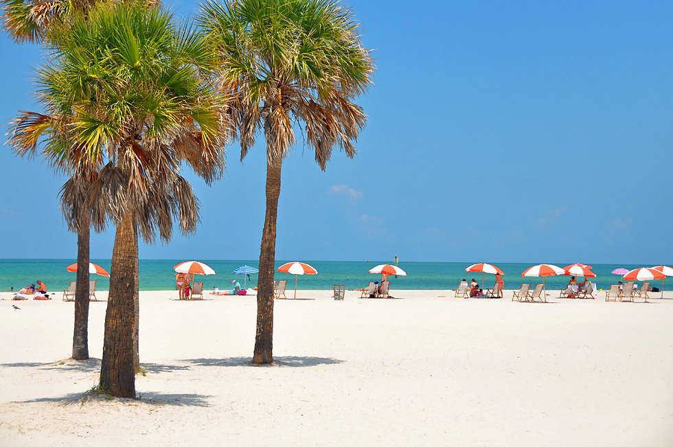 clearwater beach umbrellas PAINT classic