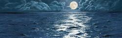Glistening Night