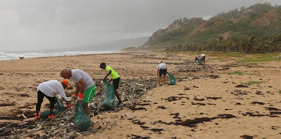 school group beach clean