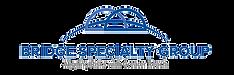 Bridge Specialty Group Logo