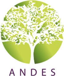 logo_andes_INSTAGRAM.jpg