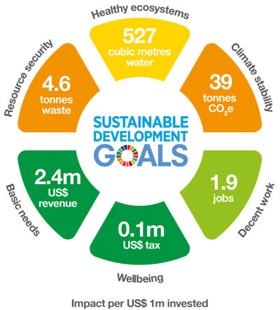 Major funds launch toolkit to help investors measure SDG impact