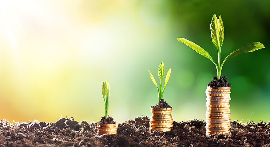 wealth creation image.jpg