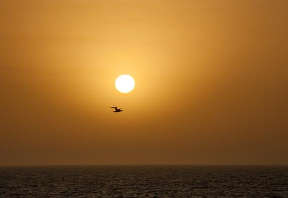 Au large des côtes de la Casamance, Sénégal, mars 2018.