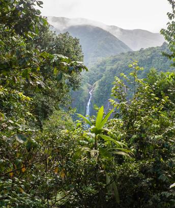 Les chutes du Carbet, Guadeloupe, 2015.