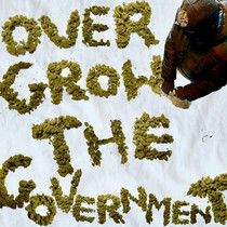 OVER GROW THE GOVERNMENT