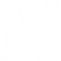Icon_Consulting-Icon White.png
