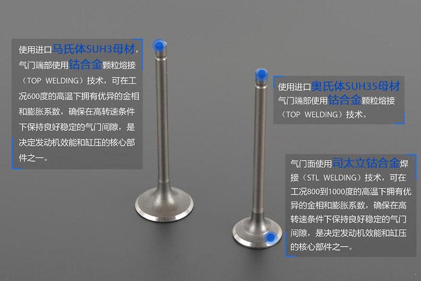气门构造材料.jpg