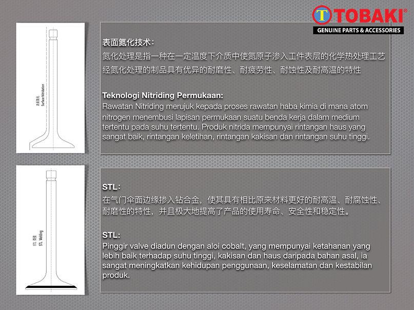 CFTM Valve description 2.jpeg