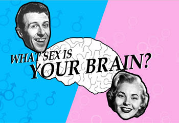 Fun: Does your brain think like a woman or a man?