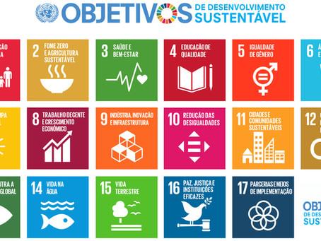 Desenvolvimento sustentável: decifra-me ou te devoro