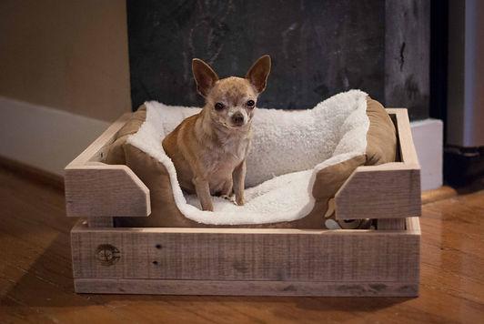 Pet-Bed-Crate.jpg