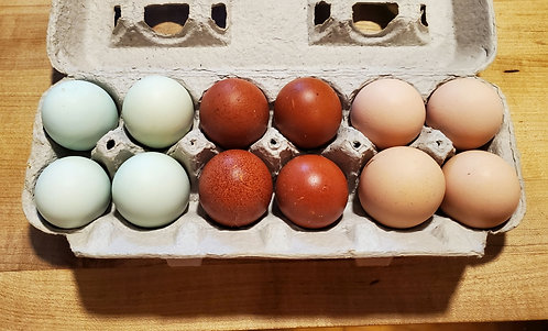 Assortment of Hatching Eggs of any of our breeds.