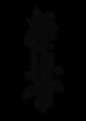 Иероглиф черный.png