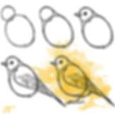 Vogel 1.jpg