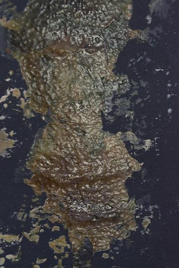 TERRITOIRE 200705
