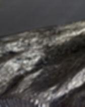 COALEN-(73)mw.jpg