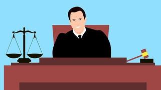 JUDICIAL REVIEW - Article 32