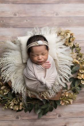 Newborn_2020-21.jpg