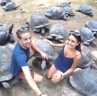 tortoise5_edited.jpg