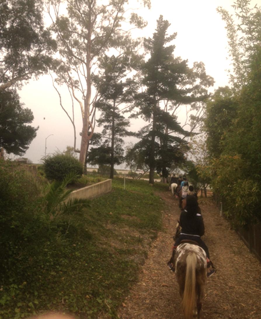 Santa Barbara Beach Horseback Rides and Bluffs Horseback Rides