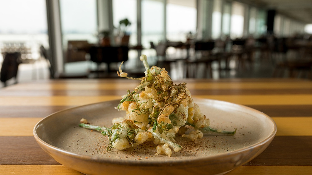 Melhores Restaurantes Novos Vista Ibirapuera Mac USP