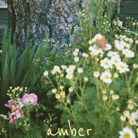 HALEY FUCHS - AMBER