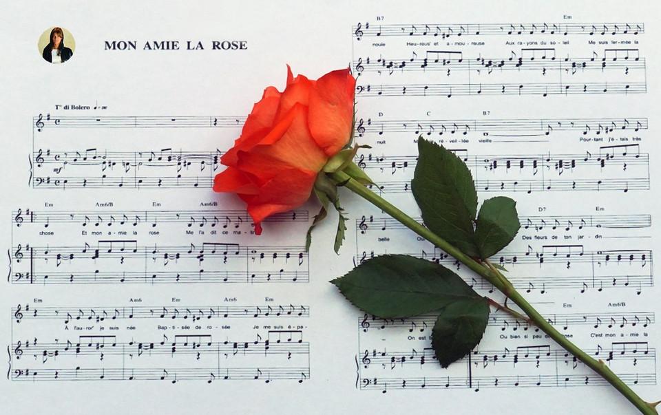 mon amie la rose (Copier).jpg