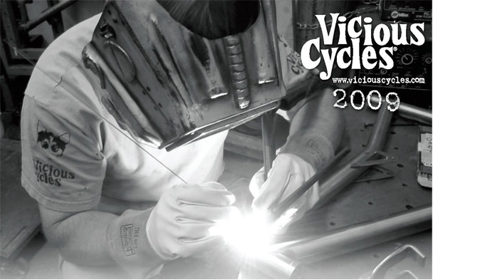 Vicious Cycles catalog cover