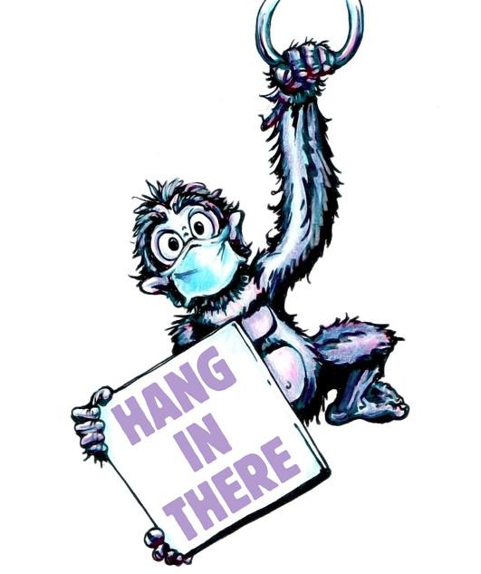 monkey081020_1080h.jpg