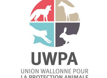 UWPA | Union wallonne pour la protection animale