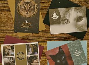 Carte de voeux chats