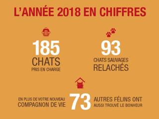 L'ANNÉE 2018 D'EM EN CHIFFRES