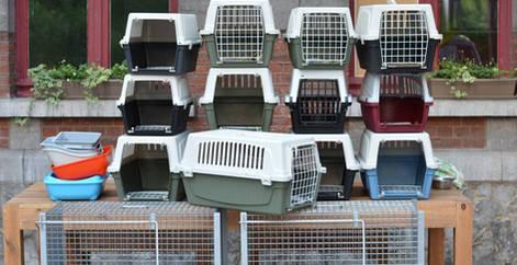 cage de transport pour les chats errants à stériliser, Brabant wallon, refuge chat, SPA Belgique