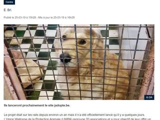 EM dans la presse : Les refuges wallons s'associent au nom du bien-être animal (DH)