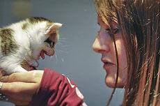 Témoignage bénévole/volontaire avec des chatons dans un refuge pour chats à Braine l'Alleud