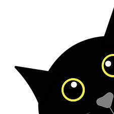 black-cat-is-curious-4134136_1920.png