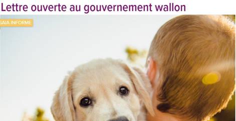 Lettre ouverte au gouvernement wallon sur le bien-être animal, refuge Belgique, protection animale, SPA, Everyone Matters ASBL