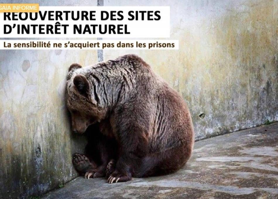 Campagne de sensibilisation sur la réouverture des sites d'intérêt naturel, zoo, refuge Belgique, protection animale, SPA, Everyone Matters ASBL