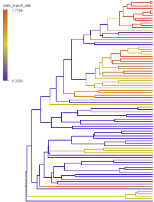 state_branch_rates_tree_example.png