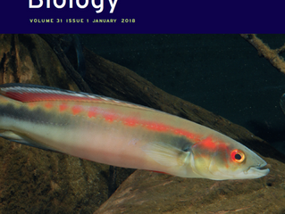 Recent paper featured on the cover of the Journal of Evolutionary Biology!