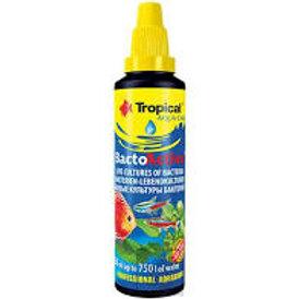 Tropical Bacto-Active 250ml