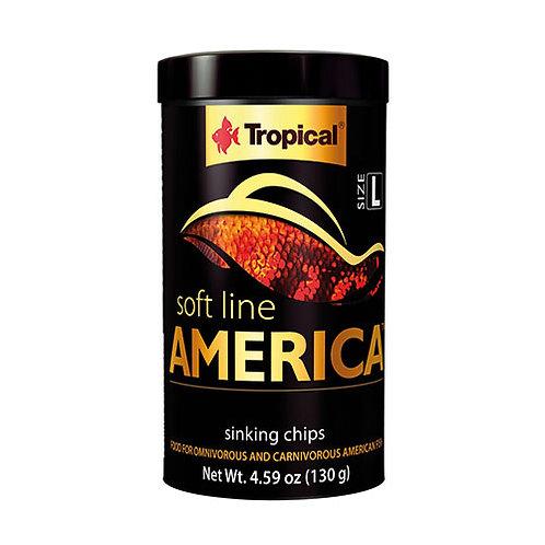 Tropical Softline America Sinking Chips 100ml